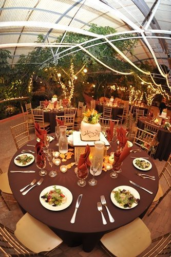 Insider Tips to Choose the Right Caterer for Your Wedding